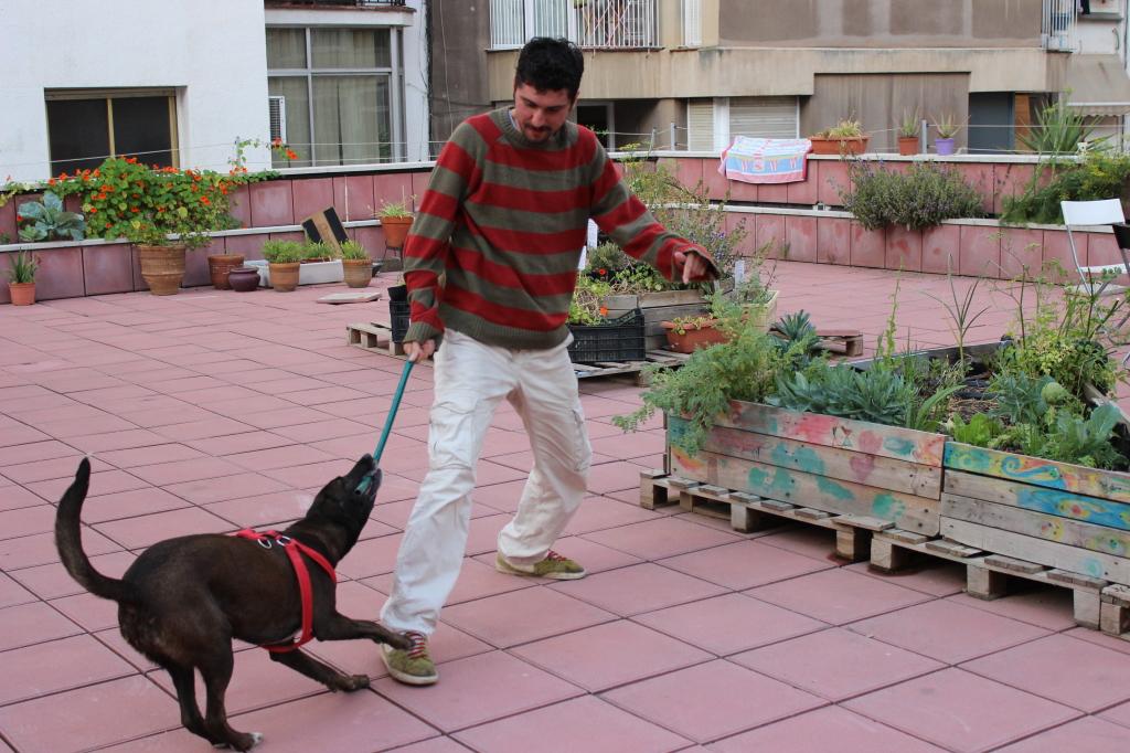 Amir with a dog